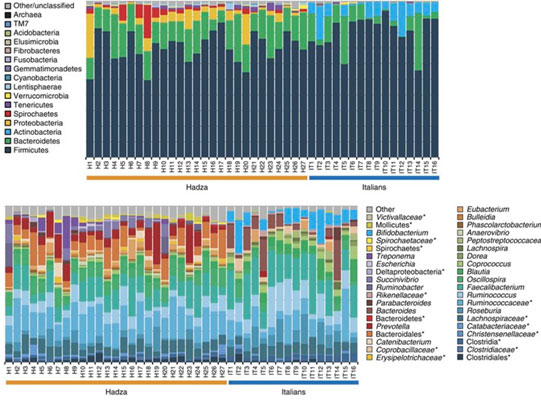 Análisis comparativo de familias y especies en un grupo de sujetos Hadza e italianos: fuente