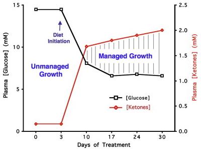 Niveles de glucosa y cuerpos cetónicos en dieta cetogénica contra el cáncer
